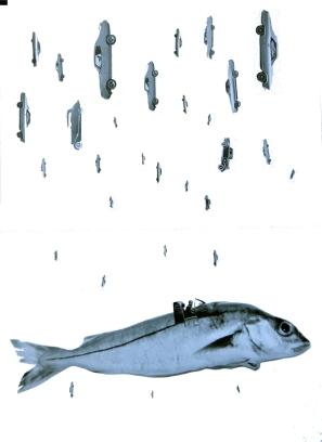 Fish Torpedo, Collage Digiprint, Auflage 12 Stück GFK 2016
