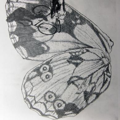 Kosmopolit 07, Graphit auf Papier, 30 x 21 cm, 2016