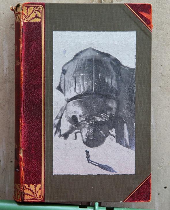 Mistkäfer 1, Mixed Media auf Buch, 25 x 17 x 6 cm, 2016