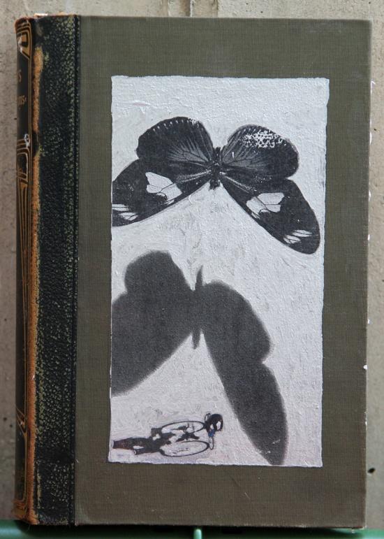 Schmetterlingstraum, Mixed Media auf Buch 25 x 17 x 6 cm, 2016