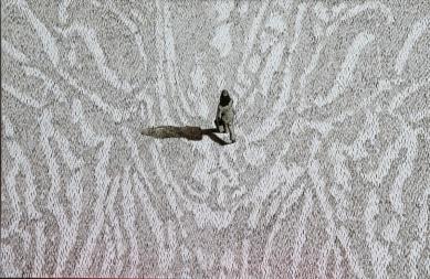 Serie Terra Coleoptera 1, Akryl auf Leinwand, 120 x 90 cm, 2016